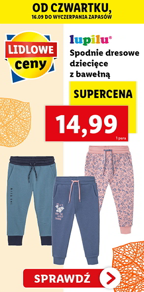 Lidl do 18.09 non food (23)